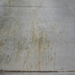 fertilizer_stains_1_before-2