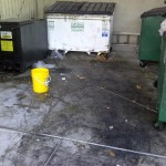 dumpster-before