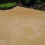 fertilizer_stains_2_before-2-2