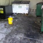 dumpster-before